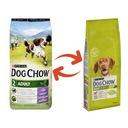 Purina DOG CHOW Adult Lamb jagnięcina karma 14 kg Marka Purina Dog Chow