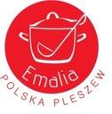 набор Кастрюль КАМЕЛИЯ 10 элем эмаль польский