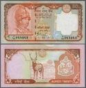 ### NEPAL - P55 - ND(2005) - 20 RUPII
