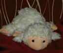 owieczka pacynka