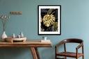 Monstera złota Plakat Plakaty B2 70x50cm Papier200 Rodzaj bez ramy