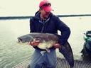Keitech Swing Impact 2' 5cm Baby Bass 216 EAN 4560262621901