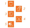 elmex CARIES Pasta do zębów na próchnicę 2x75 ml Waga 216 g