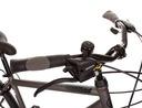 Męski rower trekkingowy GOETZE Gemini 28 Shimano Kolor czarny