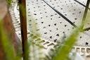 Dywan BOHO shaggy koło 120 KROPKI frędzle #GR3846 Wzór nowoczesny