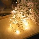 Drucik Solarny Lampki Dekoracja Ogród 10M 100 LED Barwa światła ciepła biała