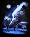 Koszulka t-shirt świecąca w ciemności wilki r.XXL Płeć Produkt męski