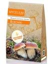 Отборный мицелий белые грибы 120мл