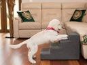 Лестница, лестницы для собаки или кошки 4 ступени - 40 см