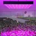 PANEL LAMPA LED DO UPRAWY ROŚLIN 45W EAN 0738716677680