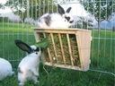 Paśnik na siano z półką dla królika gryzoni Trixie Cechy dodatkowe haki do mocowania napełnianie bez odczepiania