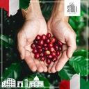 Kawa Ziarnista LA STORIA d'ORO 1kg ŚWIEŻO PALONA Rodzaj kawy czarna zwykła