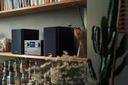 Mikrowieża Philips TAM8905 DAB+ Bluetooth Spotify Kolor czarny