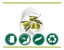 PALMOLIVE mydło w płynie OLIVE MILK zapas 500 ml Rodzaj płyn