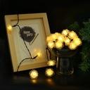 Girlandy Lampki Rose Ogrodowe Solarne 50 LED 7m Marka inna