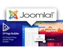 STRONA INTERNETOWA WWW ONE-PAGE + domena + hosting Nazwa strona onepage