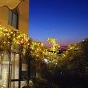 100Led Solarna Lampa 12M Ogród lampki dekoracyjne EAN 053742583096