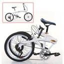 20calowy 7biegowy podwójny hamulec składany rower Kolor szary