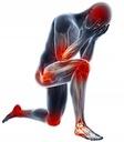 Maść konopna CBD egzema, AZS, łuszczyca, ból 100ml Przeznaczenie egzema