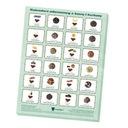 Mikołajkowy kalendarz adwentowy z kawą i herbatą