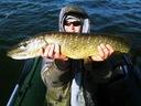 Water King Stynka 5cm Kolor 04 Nazwa koloru producenta 04
