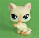 kot KOTEK kartuski #981 Littlest Pet Shop LPS Marka Hasbro