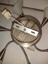 Lampa sufitowa z 6 matowymi kloszami-kielichami Pomieszczenie Jadalnia Korytarz/Schody Salon Sypialnia Uniwersalne Biuro Kuchnia