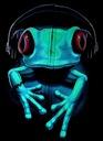 Bluza świecąca w ciemności czarna żaba r.L Marka inna