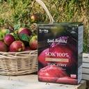 Sok tłoczony 300 ml JABŁKO RABARBAR Sad Solniki Nazwa handlowa Sok jabłkowo-rabarbarowy