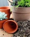 PODŁOŻE ziemia do sukulentów i kaktusów 2 litry EAN 4136129961499