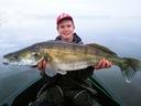 Keitech Easy Shiner 2' 5cm Green Sardine LT#49 Kod producenta KES2-LT#49