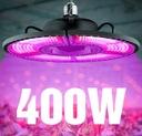 LED GROW 400W mocna lampa panel do uprawy roślin Marka Led Fitolamp