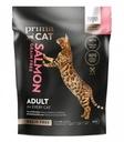 Prima Cat Salmon Grain Free 1,4 kg Łosoś bez zbóż