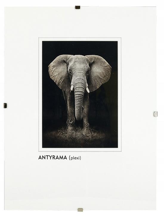 bb8f25b8bfb97f Antyrama jest świetnym rozwiązaniem aby wyeksponować zdjęcia, rysunki,  obrazy, plakaty, dyplomy w prostej formie.