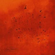 Organek [Ørganek] - Czarna Madonna *CD