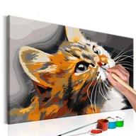 Obraz do malowania po numerach Kot Portret Kotka