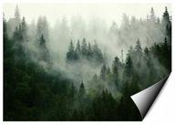 Fototapeta LAS WE MGLE drzewa góry widok 368x254