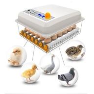 Inkubator 24 Jaj W pełni automatyczny Hatcher