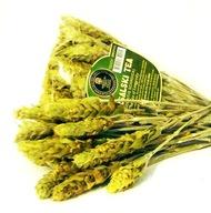 Mursalska Herbata BIO Gojnik drugi gatunek