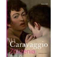 Caravaggio Zbliżenia Stefano Zuffi