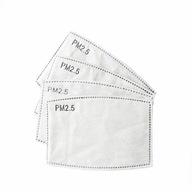 100x FILTR HEPA PM2.5 WĘGIEL FFP2 N95 do MASECZEK