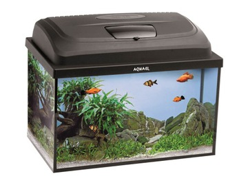 Aquael Classic Box 60 PAP LT комплект аквариума-зубатка доставка товаров из Польши и Allegro на русском