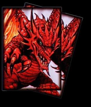 MTG: Футболки max protection: Демон-Дракон 50 [G доставка товаров из Польши и Allegro на русском