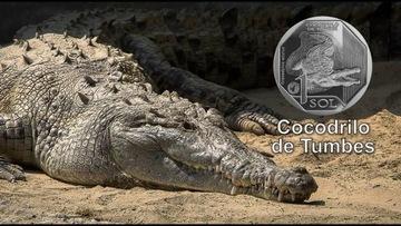 Перу 1 соль Крокодил 2017 доставка товаров из Польши и Allegro на русском