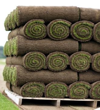 Трава из рулона газон в рулонах рулонные газоны доставка товаров из Польши и Allegro на русском