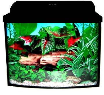Комплект аквариума-зубатка 30 литров с полным оборудованием доставка товаров из Польши и Allegro на русском
