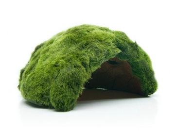 Seaweed на СКОРЛУПЕ КОКОСА живая ГРОТ для рыб доставка товаров из Польши и Allegro на русском