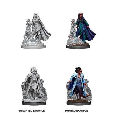 DnD Nolzur Marvelous Female Tiefling Sorcerer доставка товаров из Польши и Allegro на русском