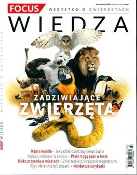 FOCUS WIEDZA nr 3/2020 ZADZIWIAJĄCE ZWIERZĘTA доставка товаров из Польши и Allegro на русском