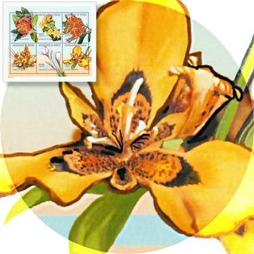 Гвинея Цветы Райский Пион Пламя Африки Блок** доставка товаров из Польши и Allegro на русском